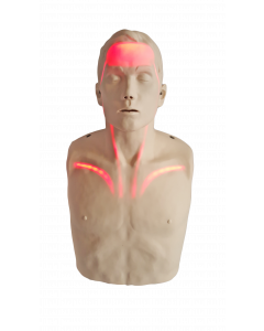Brayden CPR Manikin With Red Illumination LED Lights